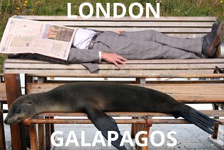 Roll over humans - benches are for sea lions to snooze on in Galapagos!