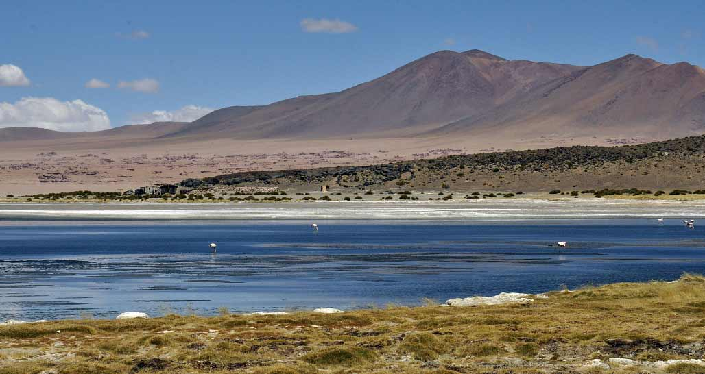 Chile - Altiplano