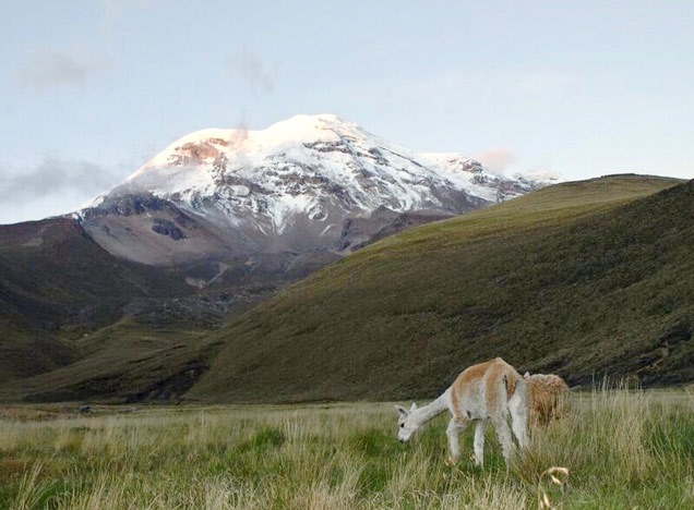 Climb the highest mountain in Ecuador, Mt Chimborazo