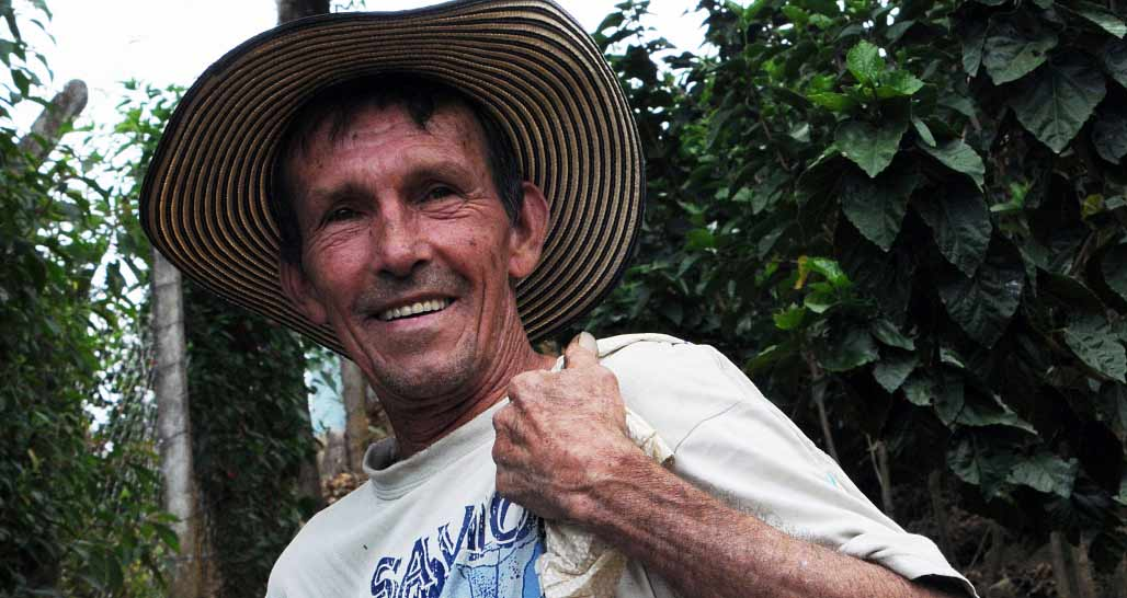 A worker on a coffee plantation