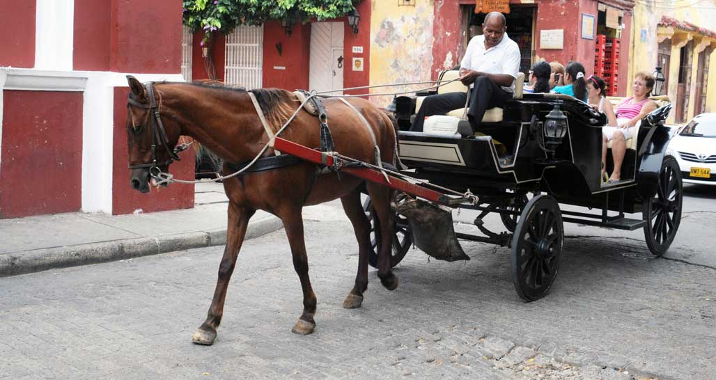 Cartagena horse cart