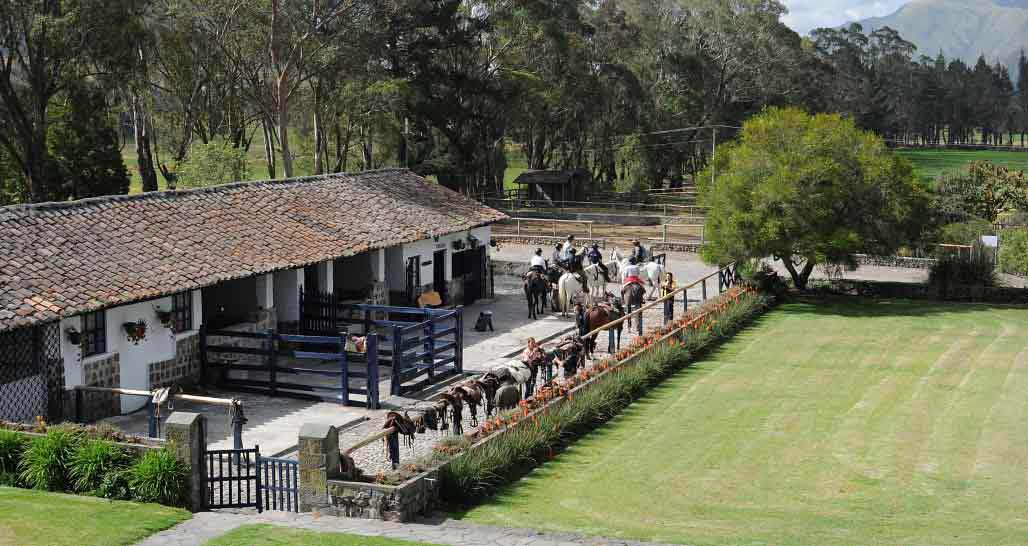 Hacienda Zuleta, the stables