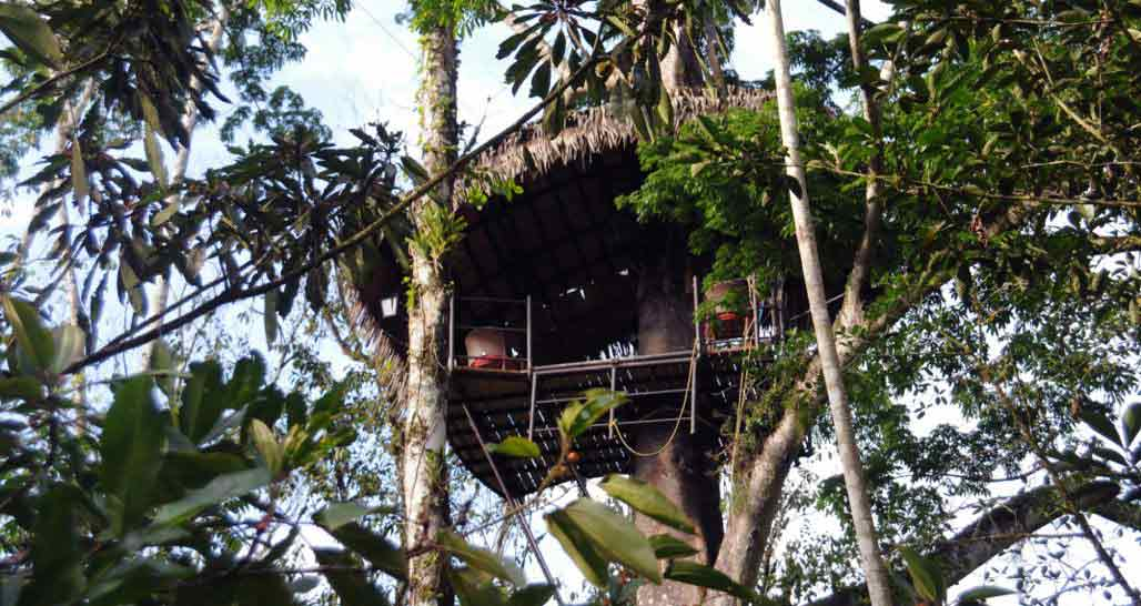 Pacuare Lodge - The Nest