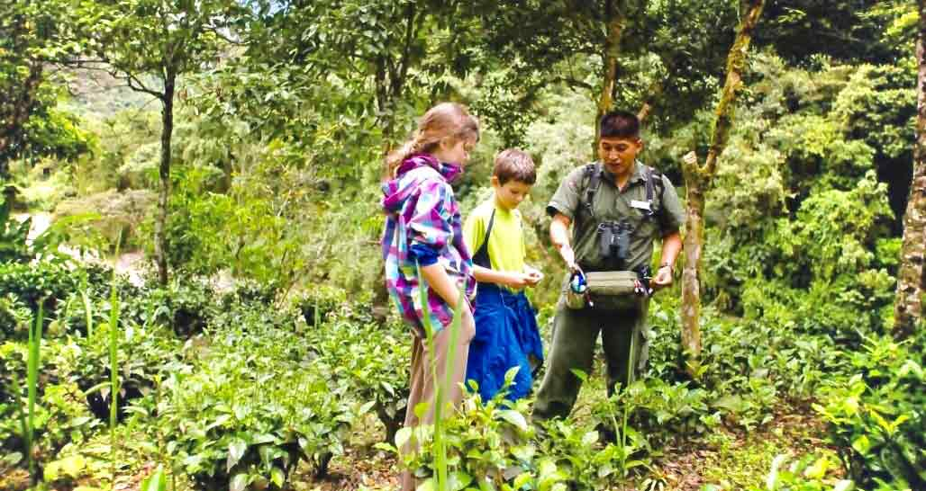 Family Experiences with Inkaterra in Peru