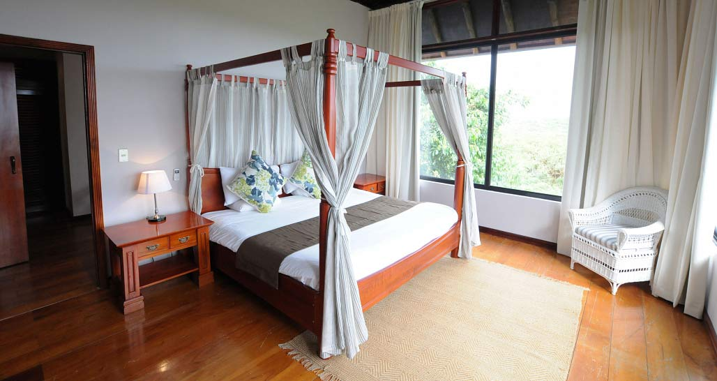Royal Palm - double room in family villa