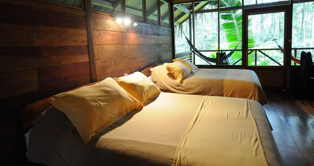 Sacha Lodge - twin bed cabina