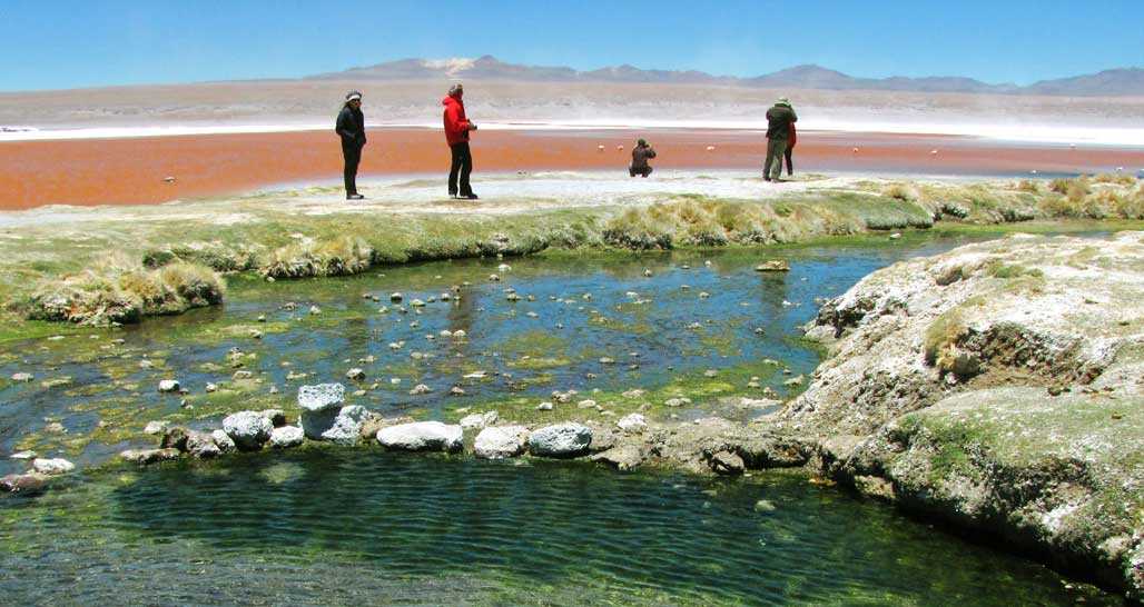 Trekking by the Laguna Colorada in Bolivia